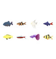 different types of fish icons in set collection vector image vector image