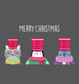 merry christmas celebration raccoon penguin and vector image