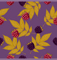 seamless pattern with blackberries and raspberries vector image vector image