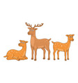 set deers vector image