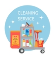 Trolley full of cleaning supplies and household vector image vector image