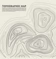 topographic contour in vector image