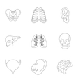 Internal organs icons set outline style vector image vector image