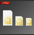 set of sim cards of different sizes vector image vector image