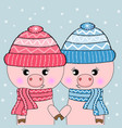 two cute pigs hello winter vector image vector image