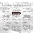 Wedding ornaments decorative elements vintage vector image vector image