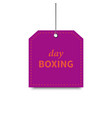 boxing day purple 05 vector image vector image