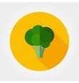 Broccoli Food icon vector image vector image
