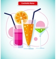Cocktails Menu Icon Variety of Beverages vector image vector image