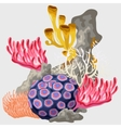 element reef with different corals vector image