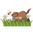 isolated picture beaver on rock vector image