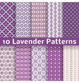 Lavender different seamless patterns vector image vector image