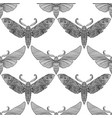 night moth in mandala style black and white vector image