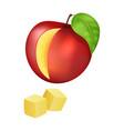 sliced and diced peach vector image