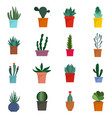 succulent and cactus flowers icons set flat style vector image vector image