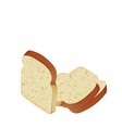 bread slices on white background vector image
