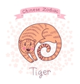 Chinese Zodiac - Tiger vector image