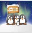 christmas penguins vector image vector image