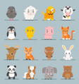 cute baanimals cartoon cubs flat design icons vector image