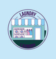 laundry cleaning delicate vector image vector image