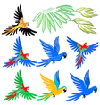 Macaw parrot pattern set vector image vector image