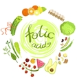 Products Rich In Folic Acid Infographic vector image