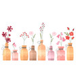 small vintage decorative bottles on white vector image