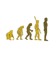 evolution handdraw vector image