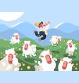 shepherd grazes herd of sheep vector image