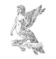 antique harpy woman bird eagle mythical greek vector image vector image