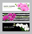 blooming orchids realistic banners set vector image vector image