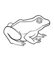 coloring book frog vector image