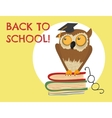Cute owl sitting on books vector image vector image