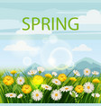 spring beautiful scenery fields mountains vector image