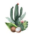 watercolor composition tropical plants vector image vector image