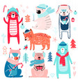 cute bears in winter clothes childish characters vector image vector image
