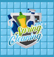 spring cleaning plastic bottles products vector image vector image