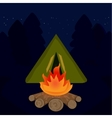 The camp campfire at travel night vector image vector image