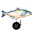 Watercolor hand drawn salmon Isolated fresh vector image vector image