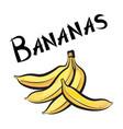 banana sign isolated bananas fruit tag fresh farm vector image vector image