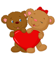 Bear couple cartoon holding red heart shape vector image