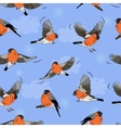 Bullfinches in flight Pattern seamless vector image vector image