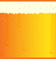 cold beer texture vector image