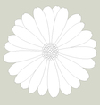 Flower white on background vector image vector image
