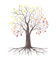 lovely autunm tree vector image vector image