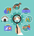 pets veterinary round concept vector image
