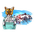 puma in knitted sweater in mountains landscape vector image vector image