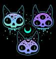 set three skulls magical bright neon cats vector image