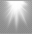spotlight light effect on a transparent isolated vector image vector image