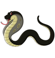 black cobra cartoon vector image